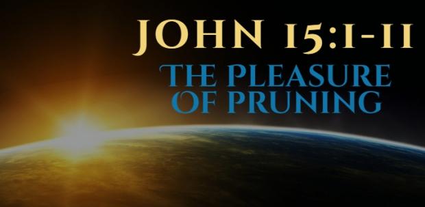 John 15_1-11